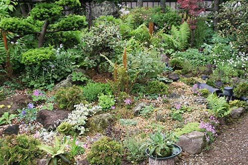 2006年春の庭